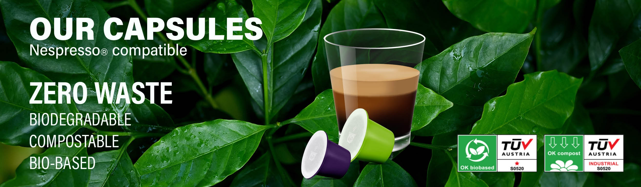 Biodegradable Organic Coffee Capsules